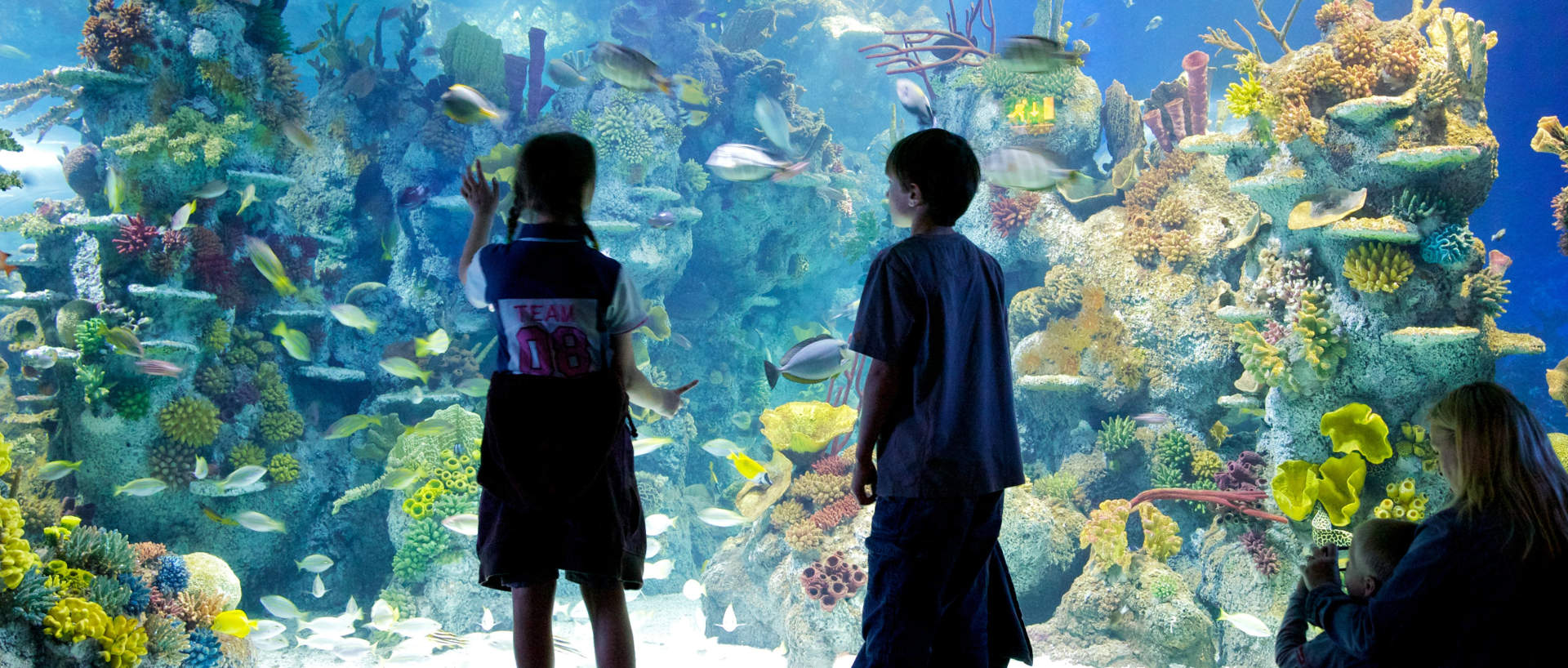 Family visiting the Aquarium near PREMIER SUITES PLUS Bristol Cabot Circus